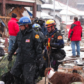 L.A. Firefighters and Search Dogs Participate in Rescue Effort in Japan, Patch.com
